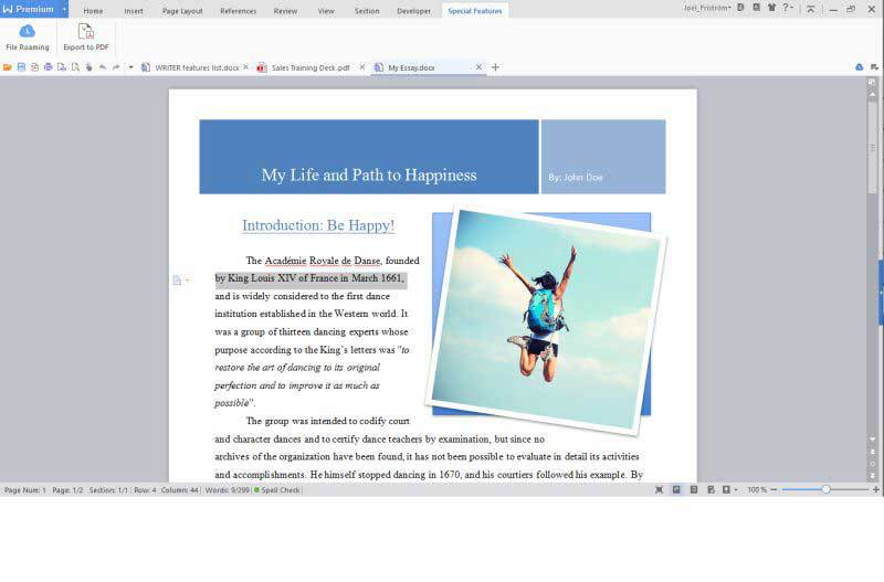 WPS Office Business Edition - (Annual License) screenshot 9